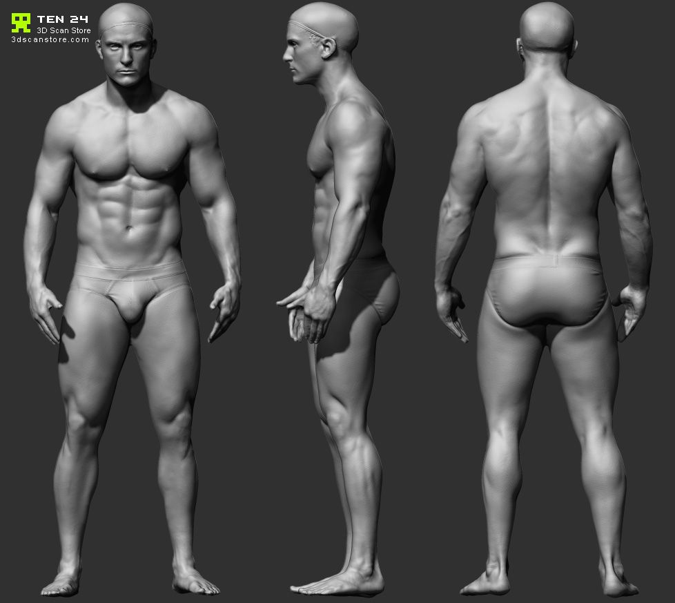 Reference Character Models - Page 6   Anatomy Reference   Pinterest ...
