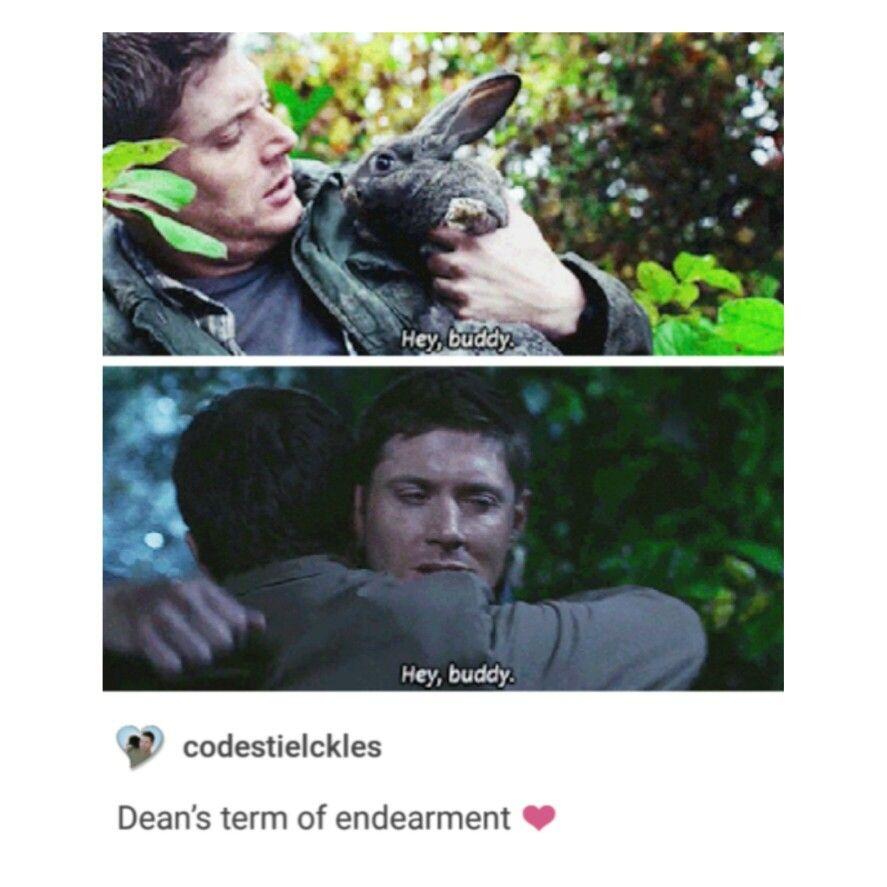 Supernatural Tumblr Textpost Destiel Dean Winchester