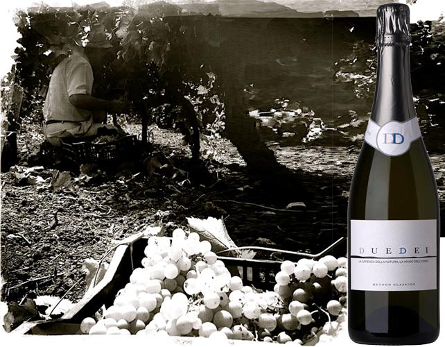 DueDei racconta del magico incontro a distanza di un anno tra il vino e il mosto della stessa vigna.