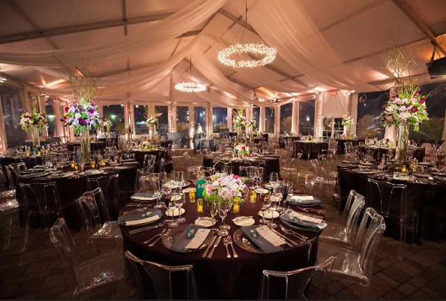 Inexpensive Wedding Venues In Ma With Images Aquarium Wedding Wedding Venues Affordable Wedding Venues