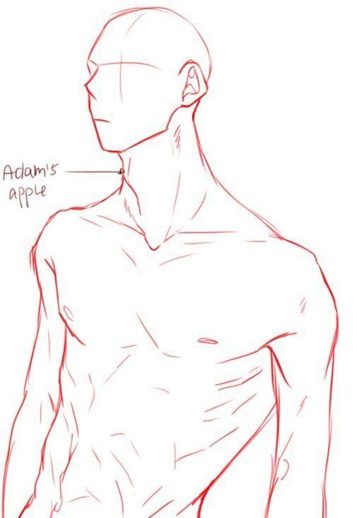 Pin By Yuki On Body Pinterest Drawings Art Reference And