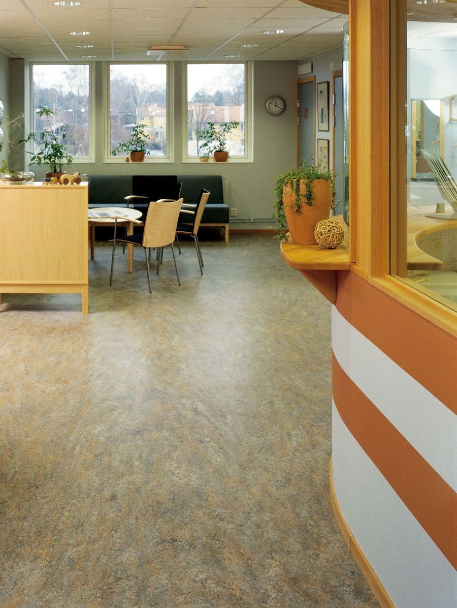 Forbo Marmoleum Vivace Natural Linoleum Non Toxic Durable 2 5mm Sheet Green Building Supply
