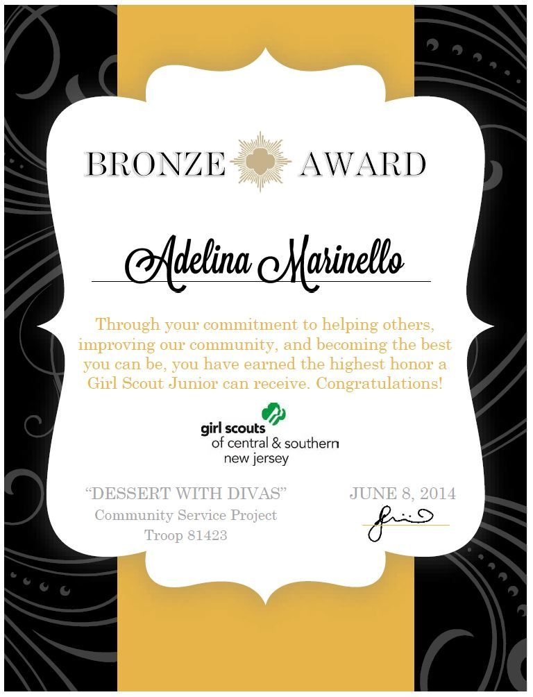 Girl Scouts  Bronze Award Certificate  Made Using Microsoft Word