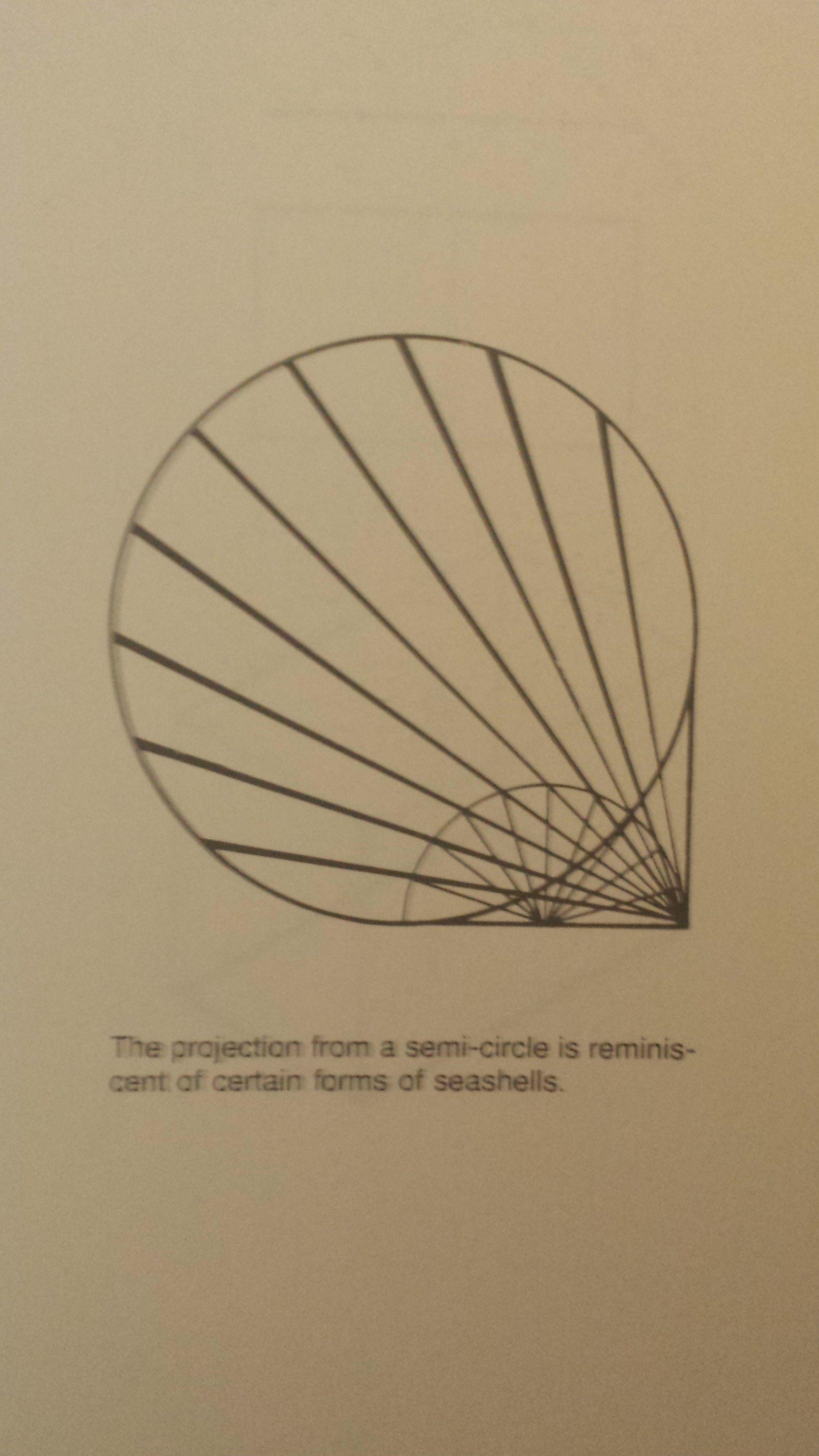 Semi Circle Projection Seashells