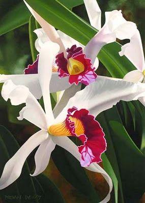pintura moderna al Óleo cuadros con flores orquídeas orquideas