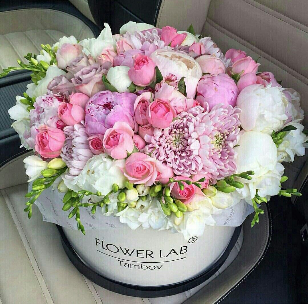 Pin by Liza Dinata on FLOWER BOX 1 | Pinterest | Flower boxes ...