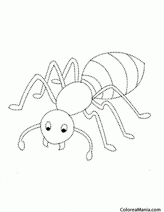 Colorear resigue la figura de la Hormiga | educacion | Pinterest ...