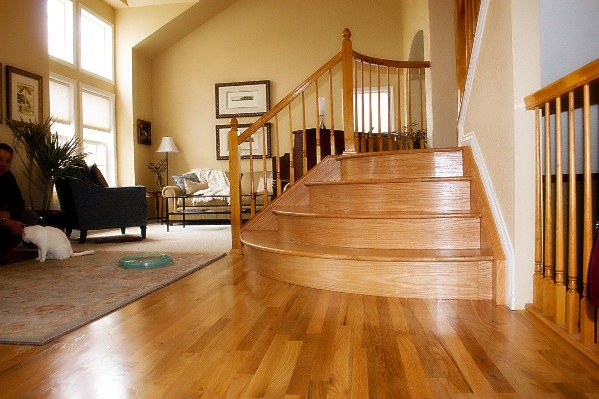 best carpet color with oak floors Google Search Carpet