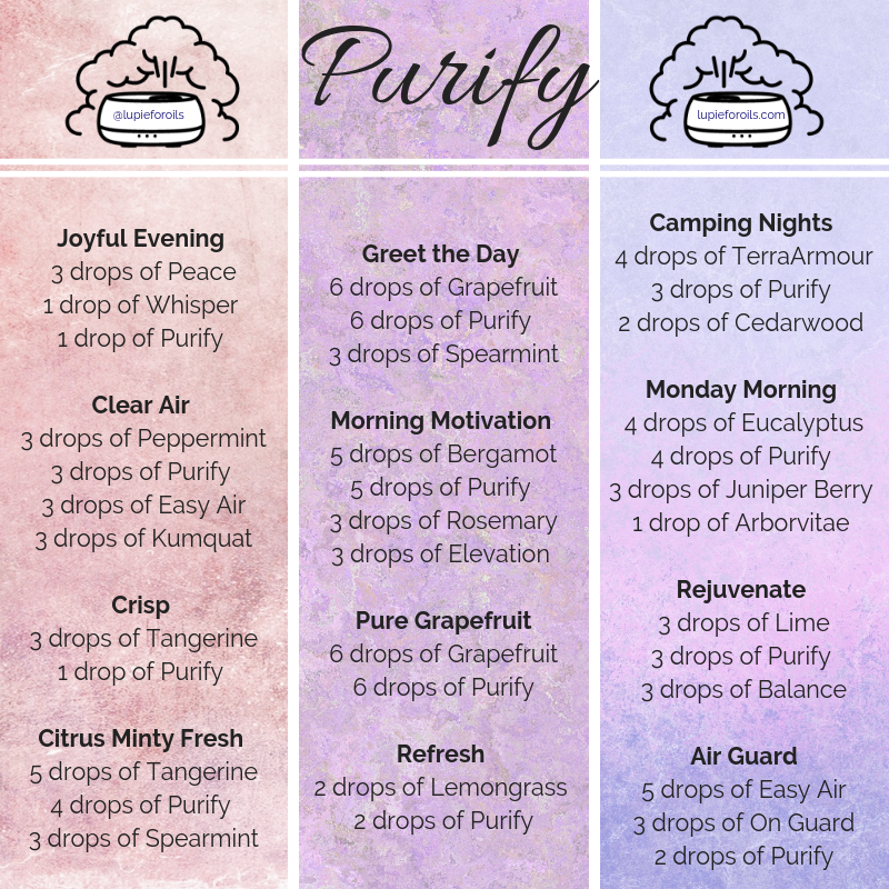 A Selection Of Diffuser Blends Using The Purify Refreshing Blend From Doter Essential Oil Diffuser Blends Essential Oil Blends Essential Oil Diffuser Recipes