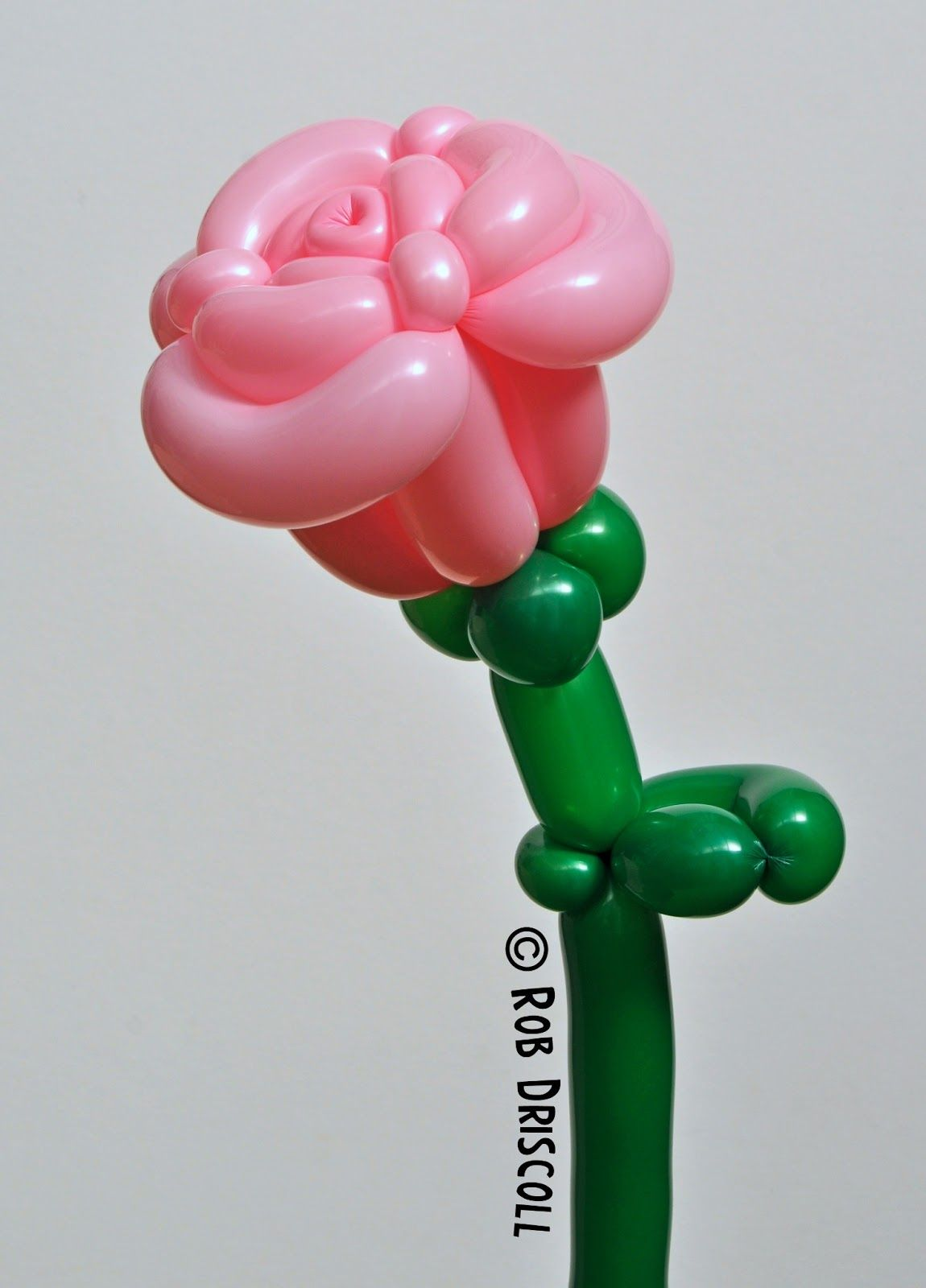 My Daily Balloon: 6th July - The Altea Rose