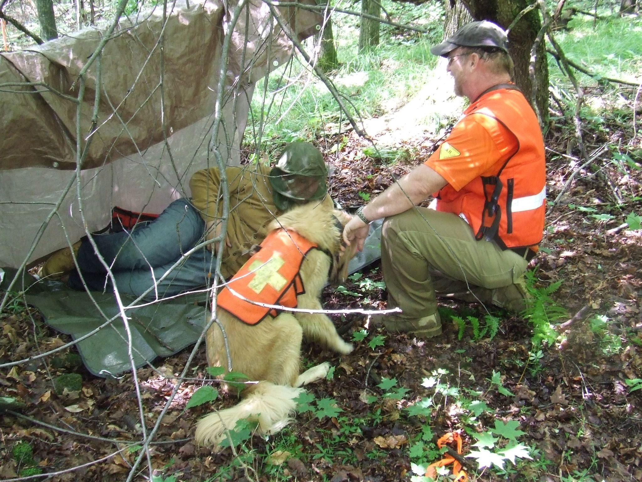 Amigo Search And Rescue Dogs New York Volunteer Search And