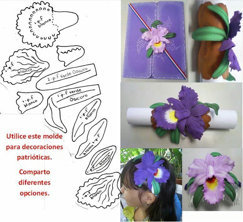 Guaria morada | farol | Pinterest | Manualidades, Flowers and Costa Rica