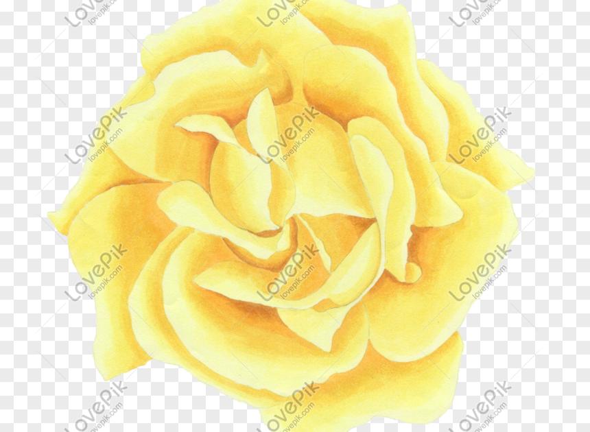 17 Gambar Bunga Indah Kartun Kartun Yang Ditarik Tangan Bunga Bunga Indah Gambar Unduh Download 30 Gambar Sketsa Bunga Mudah Bunga Mat Di 2020 Bunga Gambar Kartun