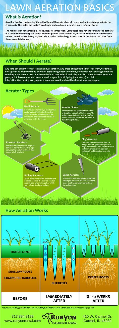 Lawn Aeration Basics Infographic Lawn Care Business Lawn Care