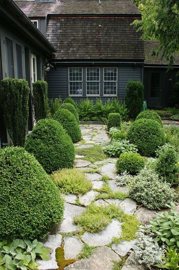 Stone Garden Path Surrounded By Evergreen Plants Paths