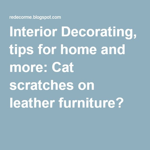 Interior Decorating Tips For Home And More Cat Scratches On