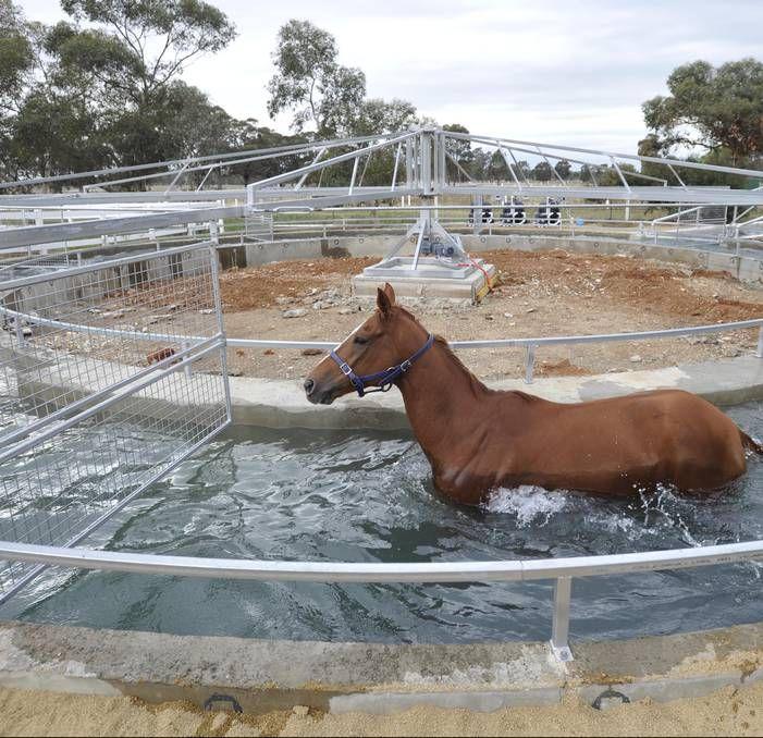 Diy Horse Walker Plan Google Search Horse Walker Horse Stables Design Dream Horse Barns