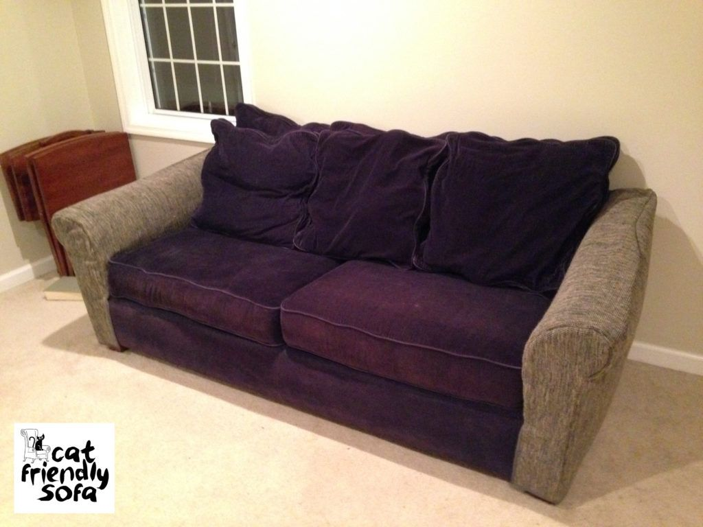 Marvelous Awesome Cat Friendly Sofa , New Cat Friendly Sofa 54 About Remodel Sofas  And Couches Set