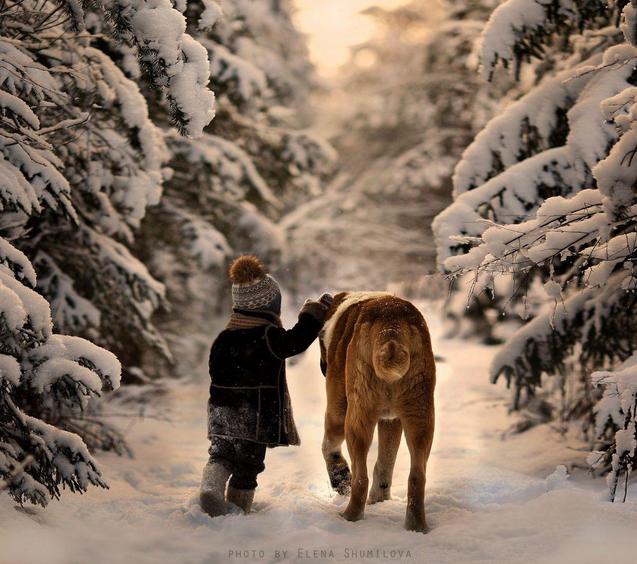 the snows.. by Elena Shumilova