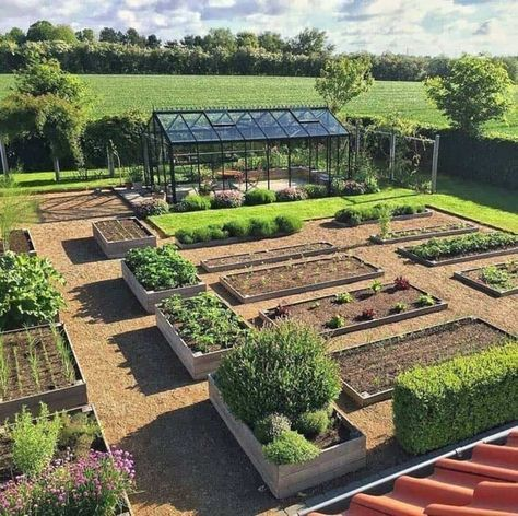 30 Amazing Ideas For Growing A Vegetable Garden In