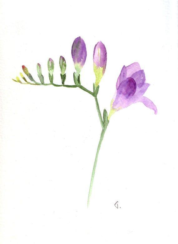 Purple Freesia Watercolour Handmade Cards,