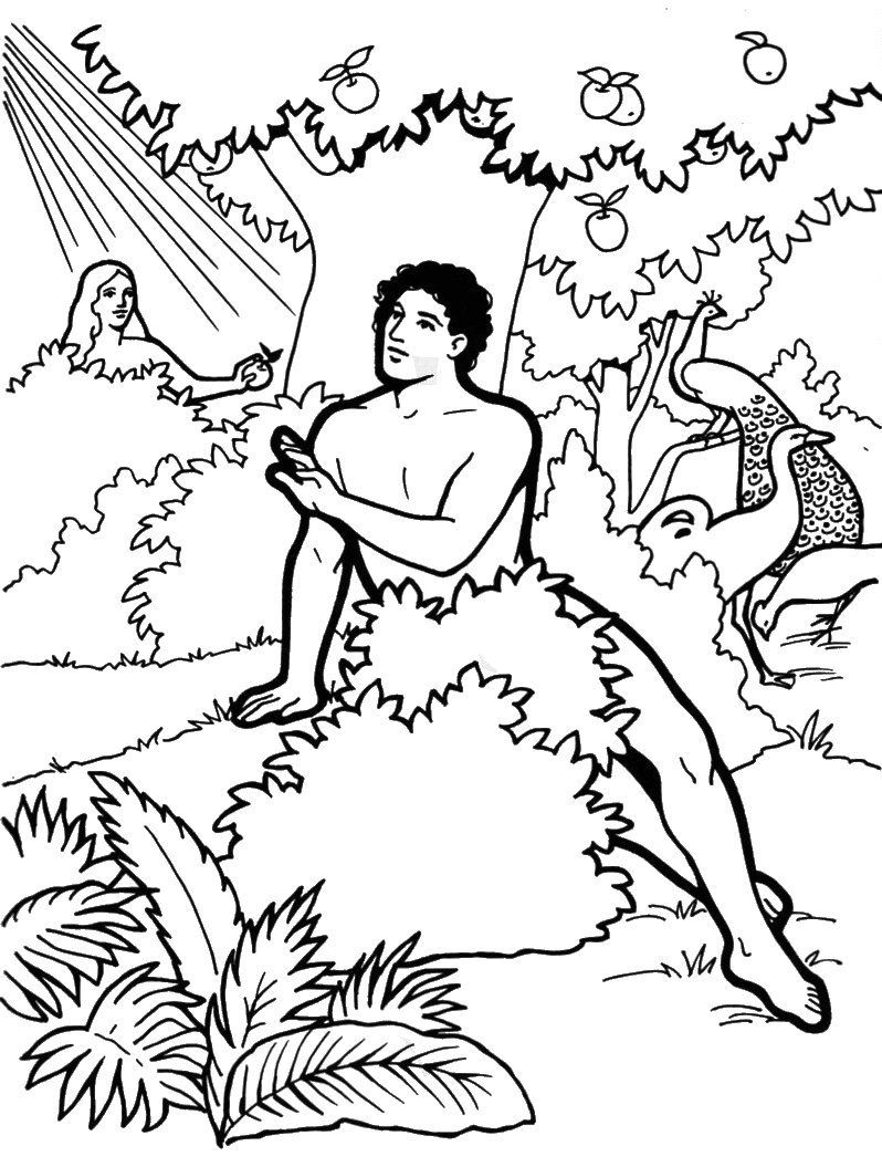 God Creates Eve Colouring Pages
