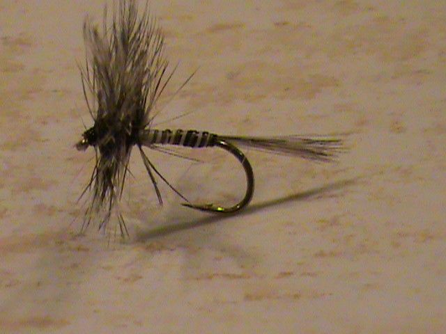 Dry Flies Choice of Sizes Fishing Flies 6 Pack Ginger Quill Dry Trout Flies
