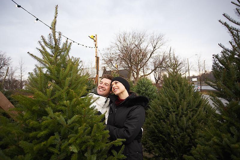 National Christmas Tree Association Find a Tree near You