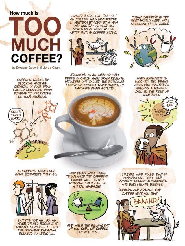 Caffeine dissertation