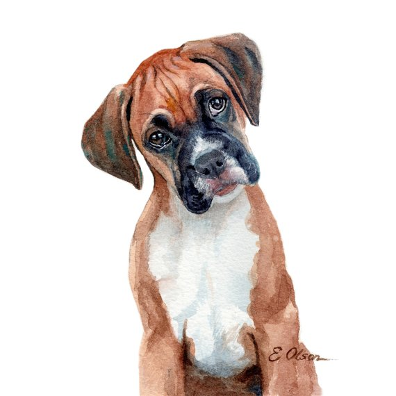 Watercolor Puppy Boxer Puppy Prints Boxer Art Prints Printable