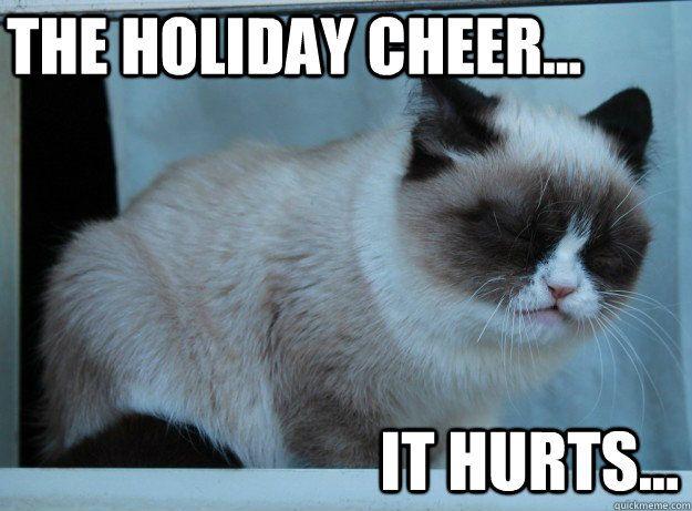7a985c92ef745695e8d43d6e3549f45f the holiday cheer it hurts memes pinterest it hurts, cheer