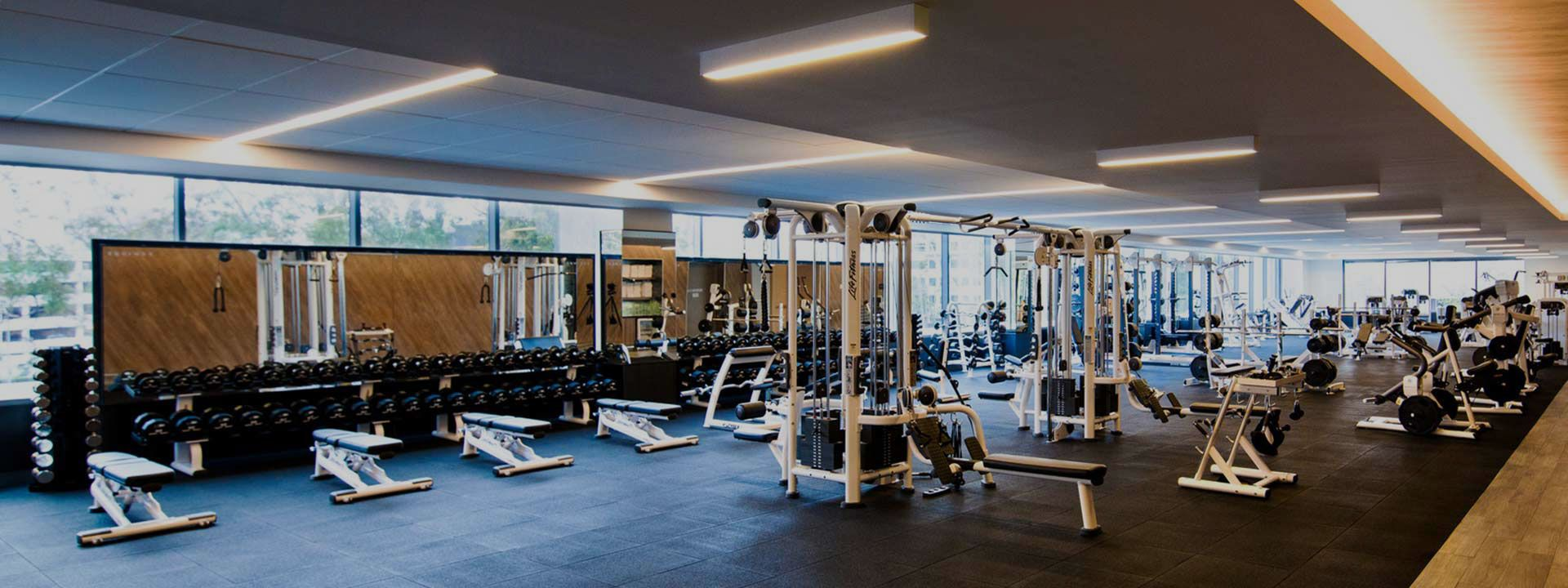 Equinox South Beach >> Equinox Fitness Google 搜尋 Gym Interior In 2019