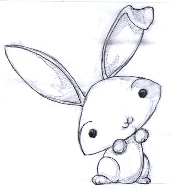 Cute bunny drawing easy