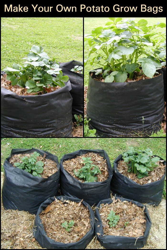 """These potato grow bags or """"tater totes"""" will help make"""