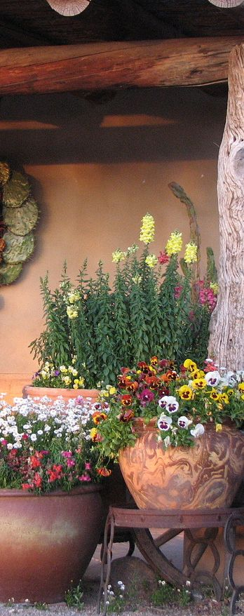 rustic spring decorating ideas container plants on classy backyard design ideas may be you never think id=84494