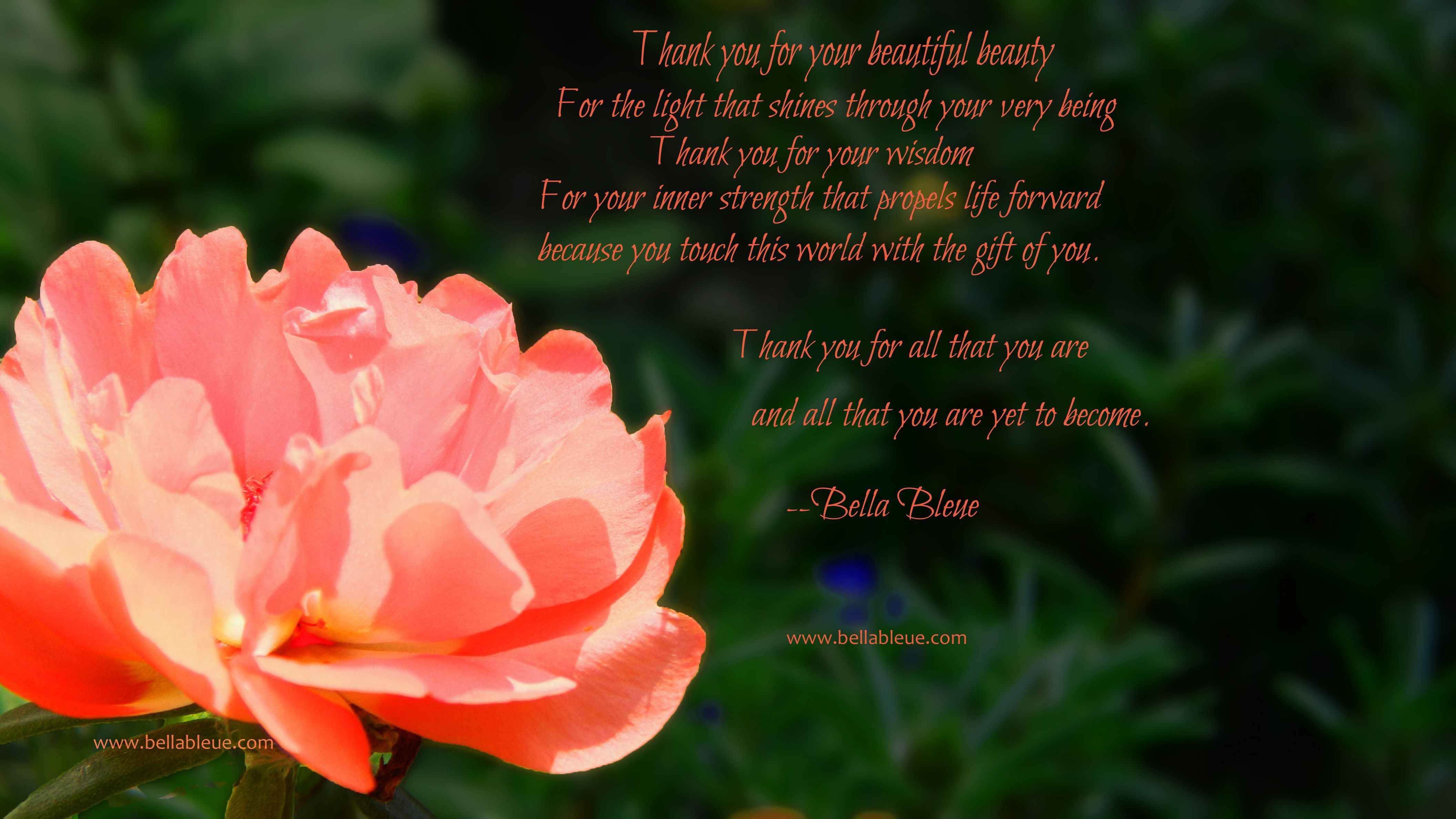 Poems of Encouragement and Strength | Poetry | Bella Bleue Healing™