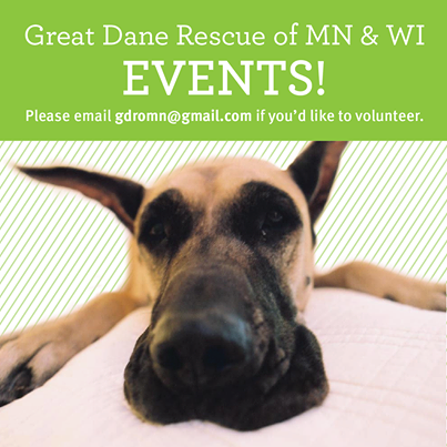Great Dane Sanctuary Of Mn Wi Consider Being A Volunteer Www Gdromn Org For More Information Great Dane Rescue Cute Dog Photos Great Dane