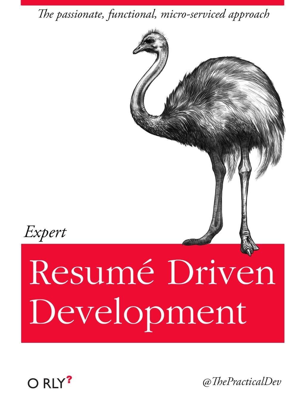 o rly resume driven development funny resume resume driven development