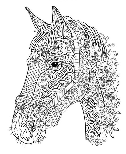 Pin u ivatele illy na n st nce omalov nky coloriage - Mandala cheval a imprimer ...