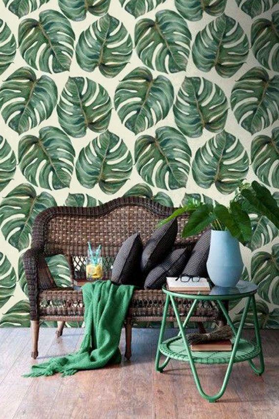 hojas costilla de Adán papel pintado, muebles de ratán
