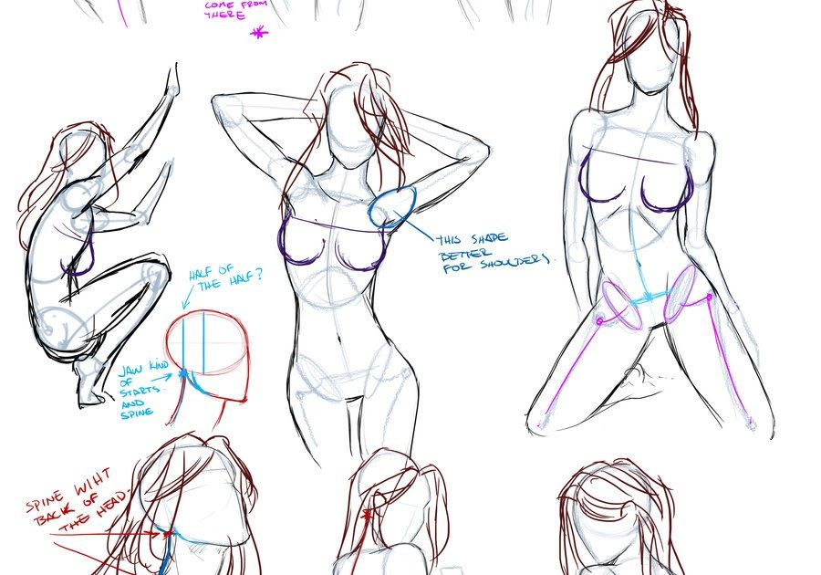 Lujo Anatomía Femenina Tutorial De Dibujo Inspiración - Anatomía de ...
