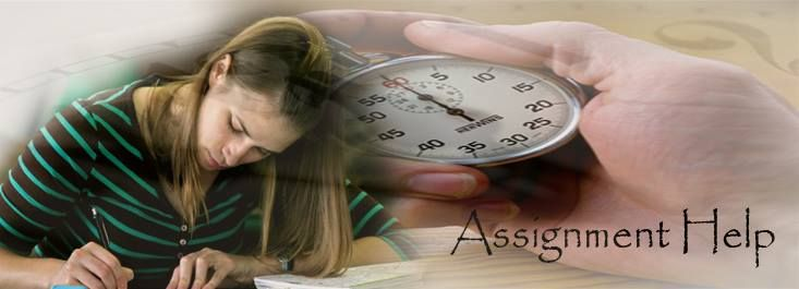 Statistics essay writing service