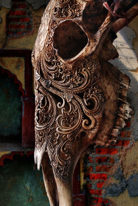 Really Pretty Ornate Bone Carving On An Animal Skull This Tattoo Would Be The Shit Bone Carving Skull Art Bone Art