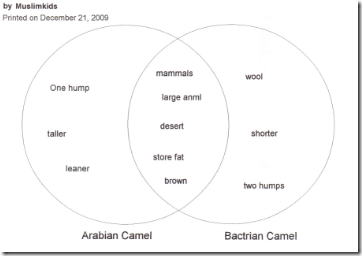 Pin by khadija on islamic studies quran for children pinterest camels and venn diagrams ccuart Image collections