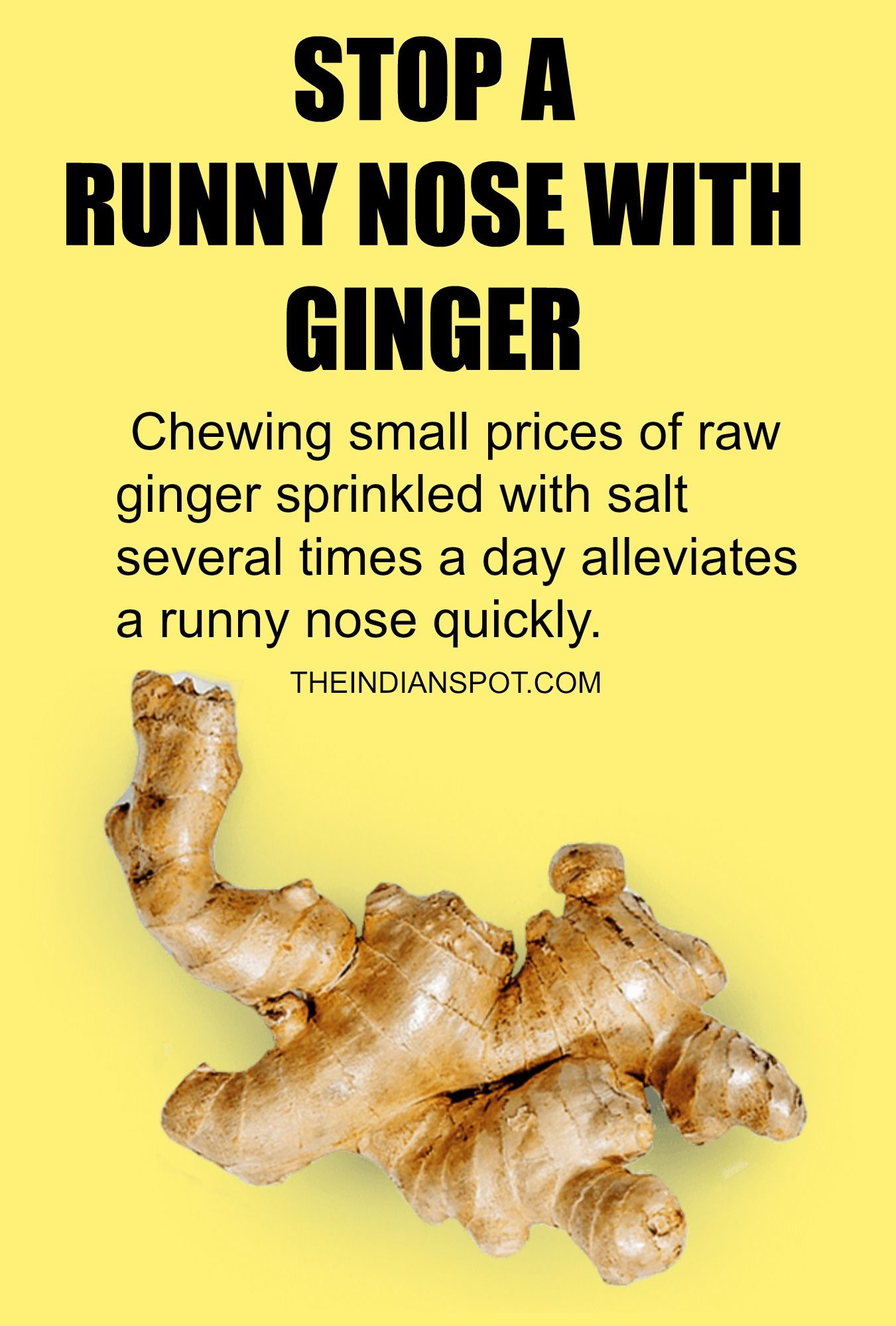 HOW TO STOP A RUNNY NOSE WITH HOME REMEDIES