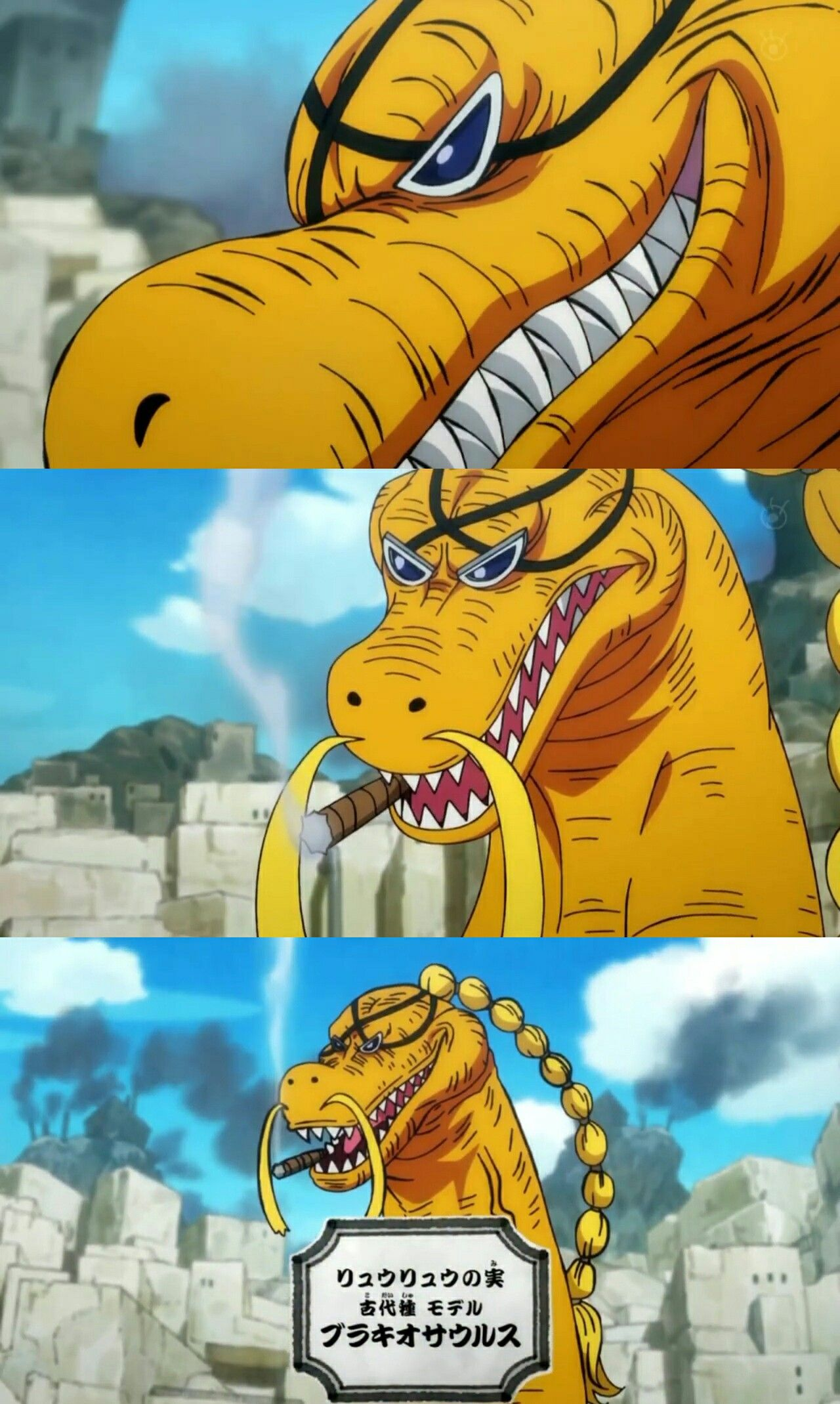 Queen's DF   One piece world, Anime one, One piece (anime)