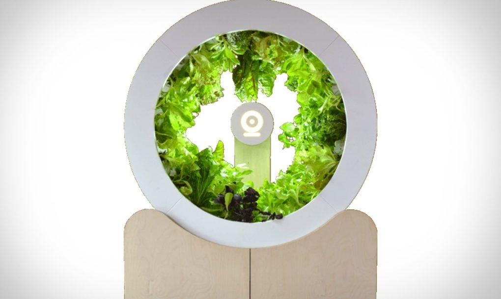 Rotating Indoor Garden Grows Up To 100 Herbs And Vegetables Every Month Indoor Garden Vertical Garden Design Balcony Herb Gardens