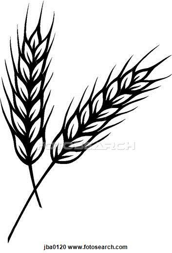 Wheat B W Clipart Wheat Drawing Wheat Tattoo Drawings