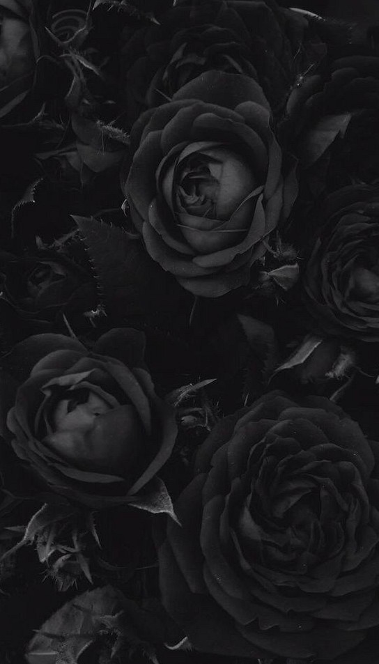 39 Unbelievable Cool Black Wallpapers In 2020 With Images