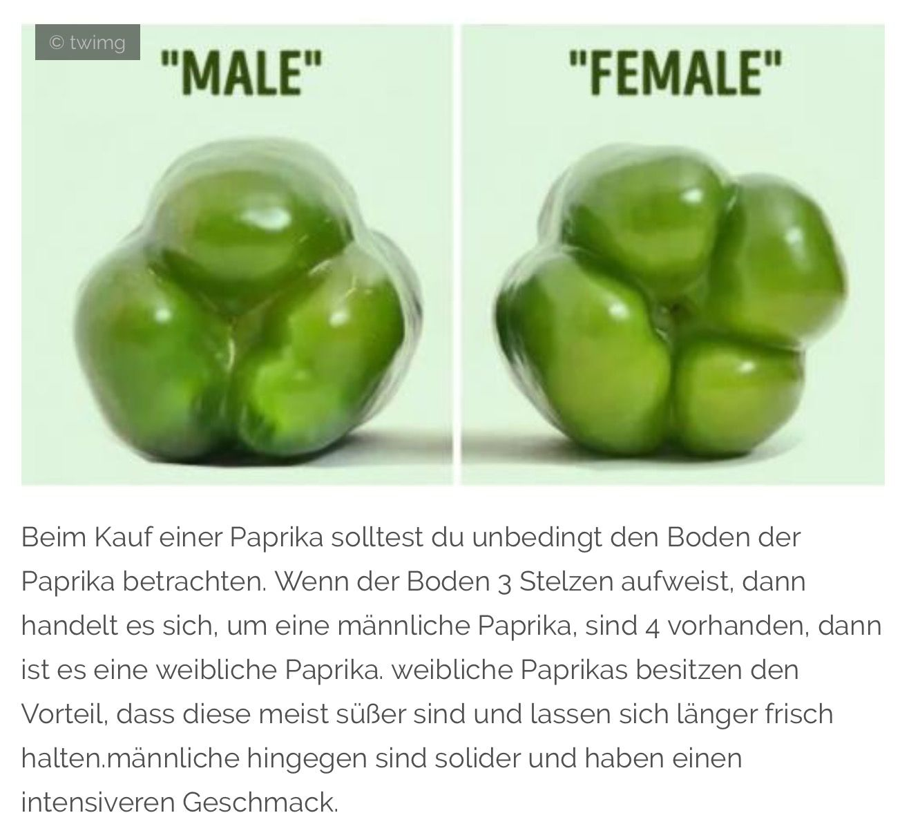 Weibliche Paprika